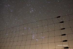 JAVALAMBREnocturno2011-300x200.jpg