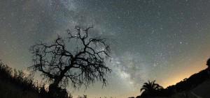 El cielo nocturno estrellado se debe se considerado como un bien científico, cultural y medioambiental inestimable que debe ser protegido y difundido como un legado para la Humanidad