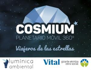 Luminica ambiental y Fundación Vital